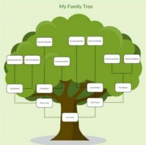 Family Tree - Genealogical Program - Delaware County Genealogical Society
